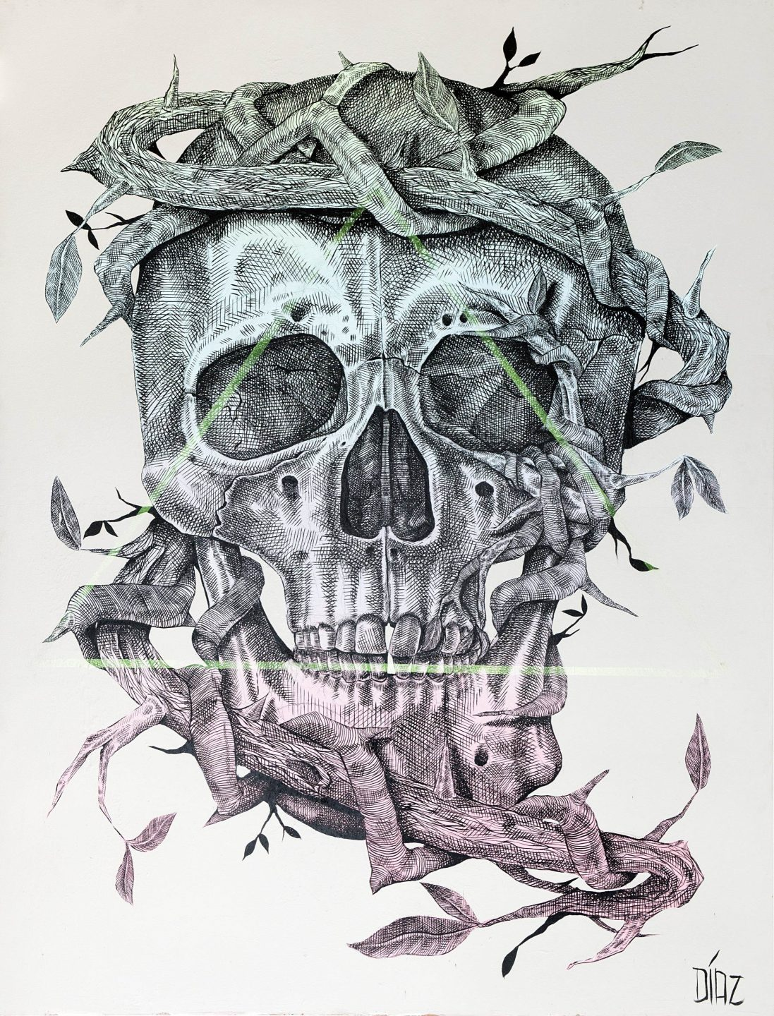 Alexis Diaz Skull URBAN NATION