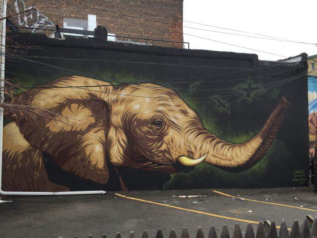Justin Suarez MR PRVRT Elephant Jersey City