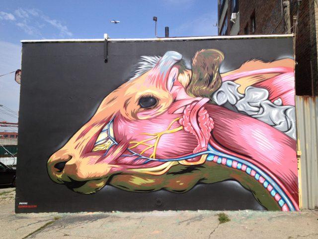 Justin Suarez MR PRVRT Anatomical Cow Brooklyn