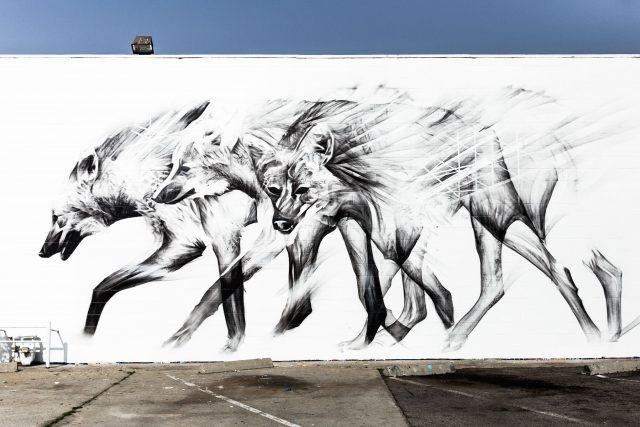 Aaron Li-Hill Carbon Mural