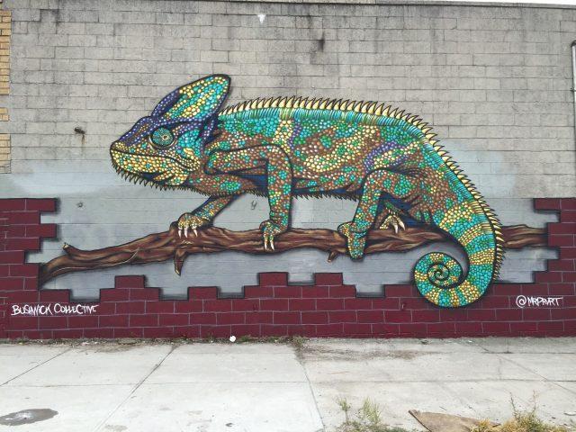 Justin Suarez MR PRVRT Chameleon Brooklyn